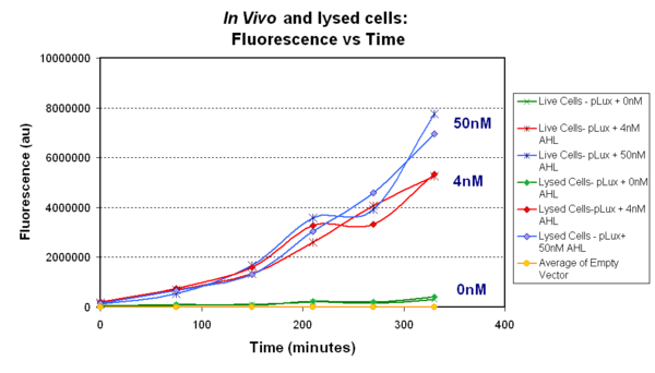 Fig.1.1:pTet-LuxR-pLux-GFPmut3b in vivo - The construct pTet-LuxR-pLux-GFPmut3b was tested in vivo to determine if the construct works. E.coli BL21 was grown and induced with varying levels of AHL. Two samples were taken every hour from batch cultures, one of these samples was lysed by freeze-thaw and the other whole cells were measured.