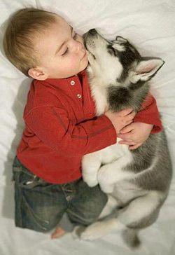 Puppy baby2.jpg