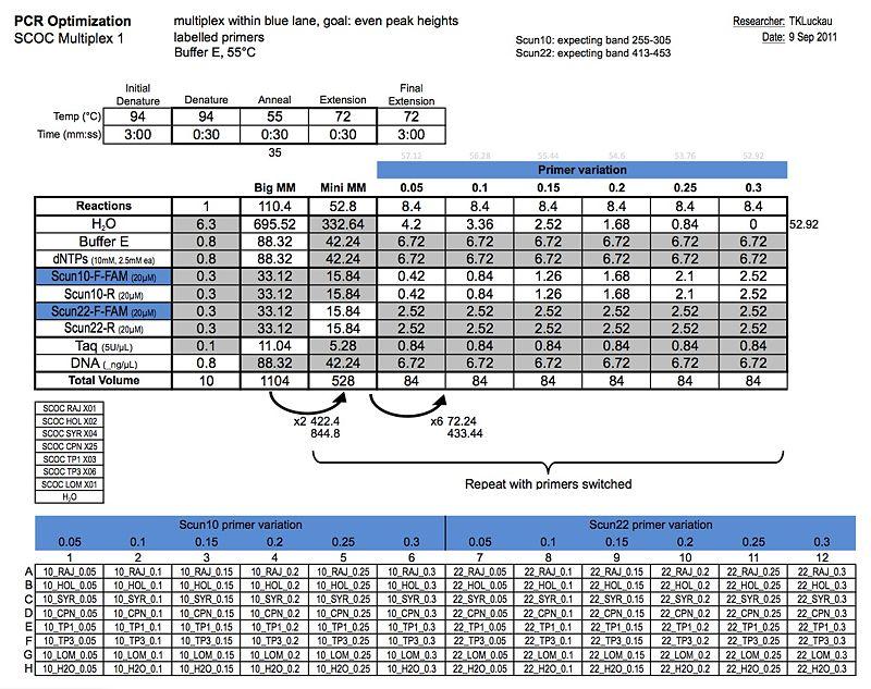 20110909 PCR.jpg