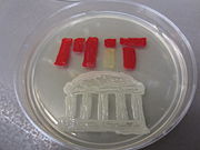 MIT, drawn with bacteria isolated from the Charles River
