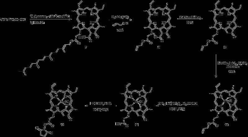 File:Biomod Aarhus Chem Scheme Photo.png