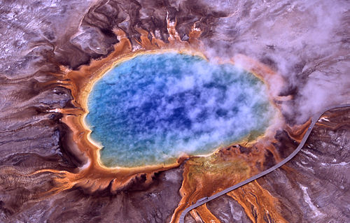 Thermophiles produce some of the bright colors of Grand Prismatic Spring, Yellowstone National Park