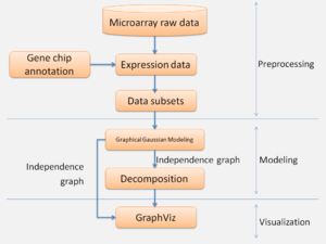 Figure 8:   Outline of microarray data analysis.