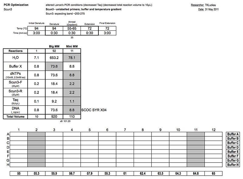 20110531 PCR.jpg