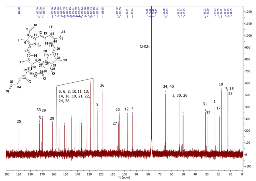 13C NMR of compound 8