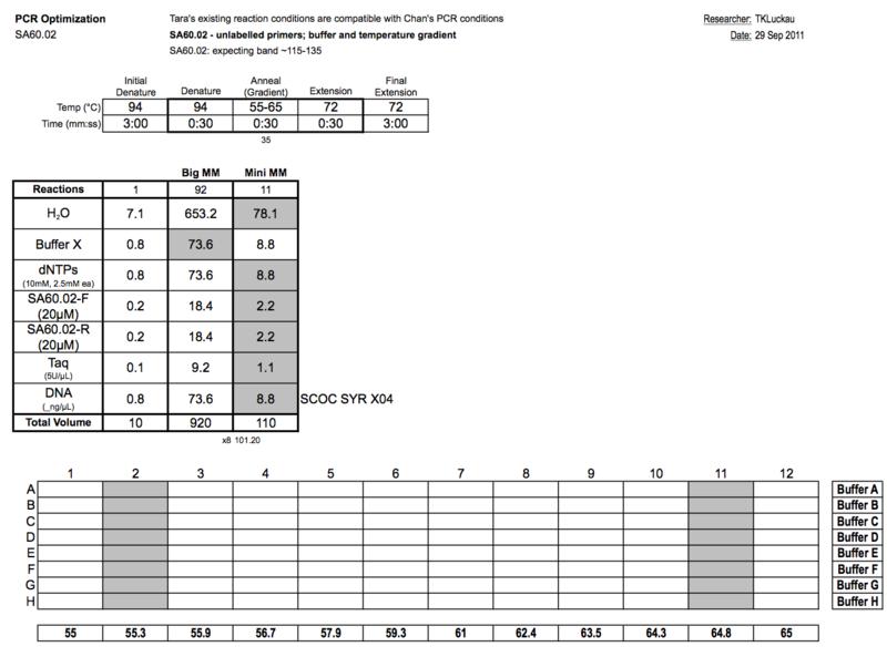 20110930 PCR.png