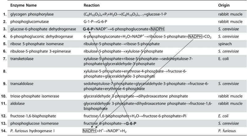 File:Enzymes2.jpg