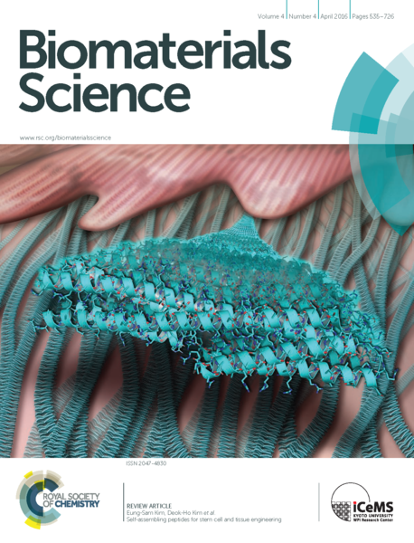 File:2016 Biomaterials Science SAPs for stem cell and tissue engineering Cover image.png