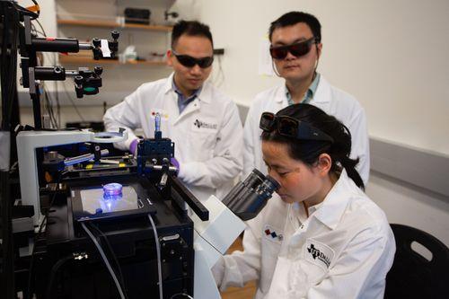 Qin Lab 2.jpg