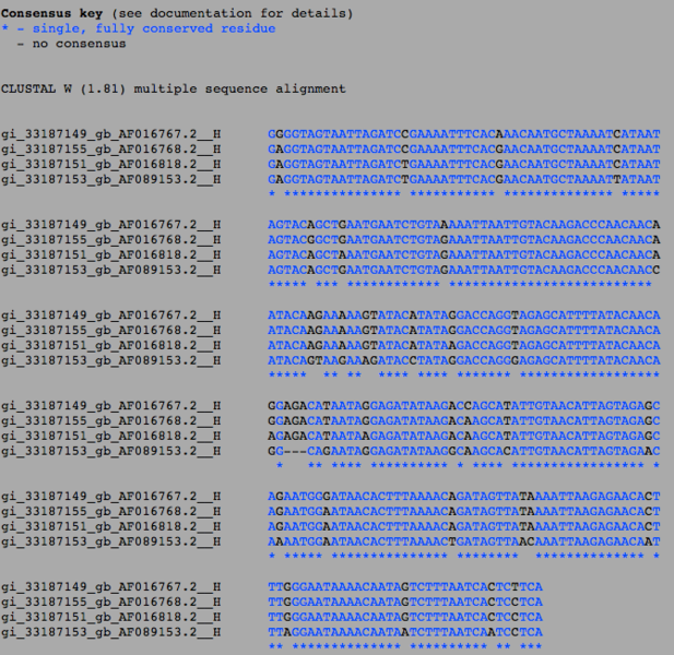 File:Sequence Alignment ClustalW.png