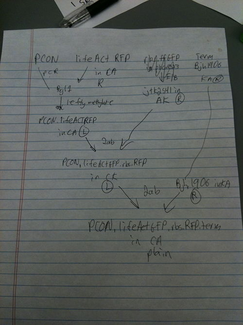 LifeactGFP-RFP.JPG