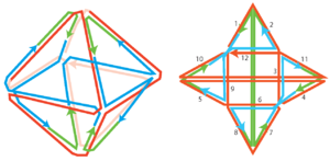 Figure 1: A 3D representation of the structure (left). The scaffold (red) is folded into an octahedron by the Z (blue) and V (green) staples. The 2D representation (right) shows that the edges are consecutively numbered from the 5'-end to 3'-end of the scaffold. 2D blueprints of the different structures containing sequences can be found in the  Supplementary.