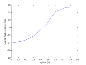 Log-Graph used to determine the growth rate
