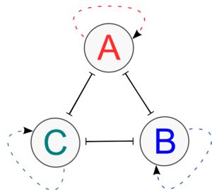 The Tristable System