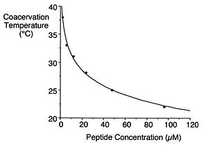 Dependence of coacervation on temperature and peptide concentration for EP20-24-24