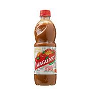 Suco Concentrado Maguary Pitanga 500ml Pet