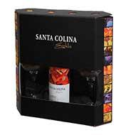 Vinho Santa Colina Estilo Cabernet 750 ml