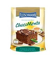 Mistura Bolo Chocomenta Fleischamnn 450g