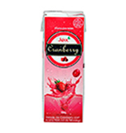 Suco Pronto Juxx Cranberry Caixa 200 Ml