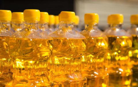 Canola oil is often touted as heart-healthy, but narrow studies often overlook the damage it might do to our cardiovascular and cognitive health.