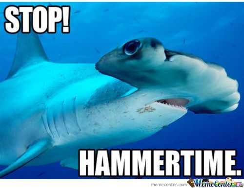 Shark week just started!