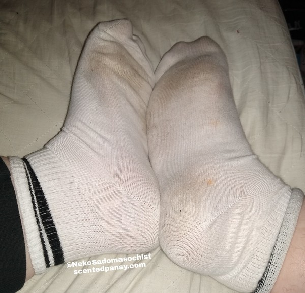 White Cotton Tube Socks One Size 👣 24 Hour Wear Included 👣 Other Add Ons Available