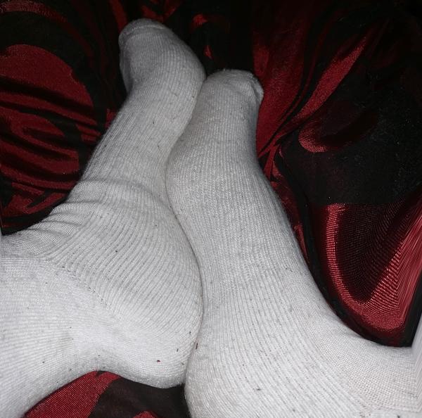 Polo Knee Socks