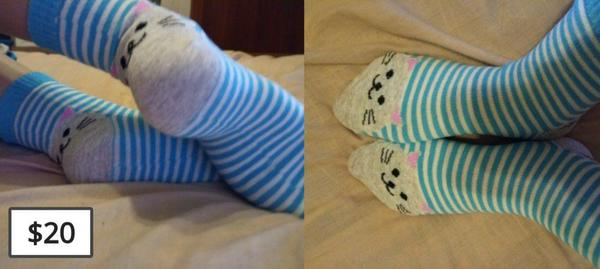 blue cat socks