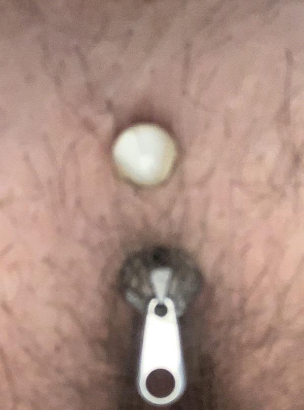 Pussy Piercings