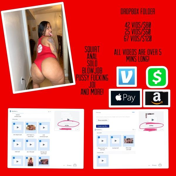 67 Video Dropbox Sale