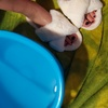 Foot bath slippers