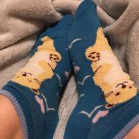 cute lil otter socks