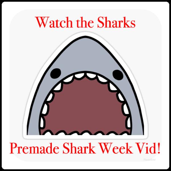 *SHARK WEEK VIDEO!