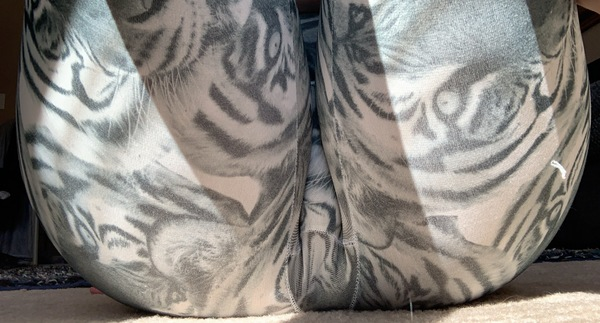 🐯Sexy Tiger Leggings🐯