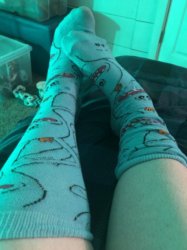 Meseeks a friend; socks (Lexi 😉)