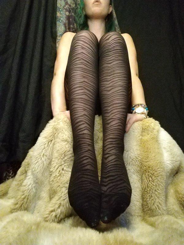 Black Zebra Tights