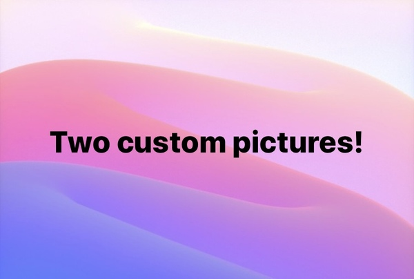 Two custom pictures