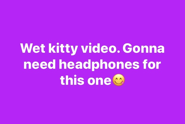 Super wet kitty video