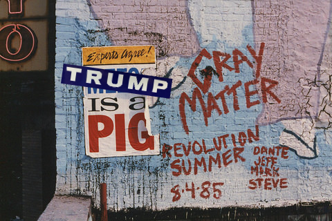 trump is a pig