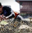 CPB divulga novas regras para os Jogos Paralímpicos Universitários