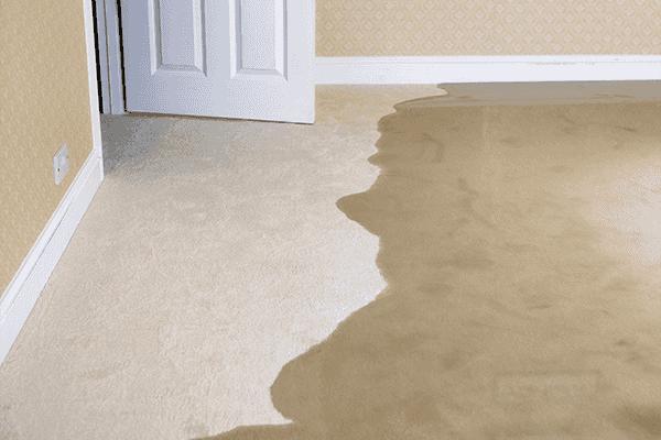 Signs of a Slab Leak