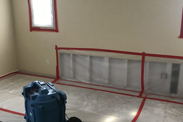 Mold Clearance Test in Upland, California