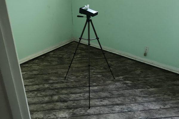 Mold Inspection Torrance, California