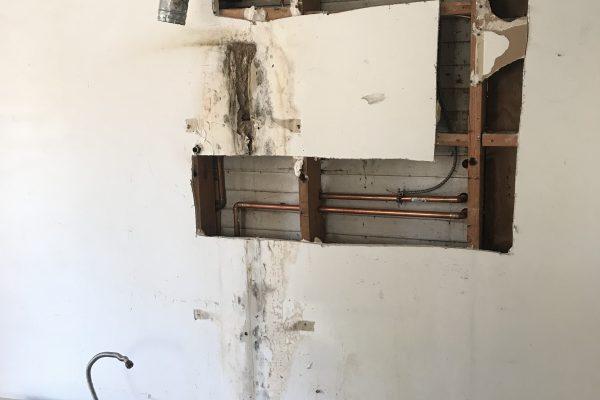 Mold inspection Glendora, California