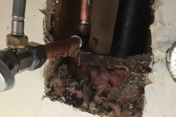 Leak Detection in Bathroom in San Diego, CA