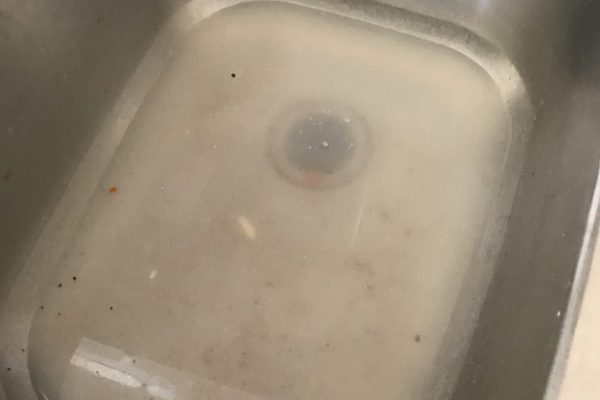 Kitchen Sink Backup in Solana Beach, CA