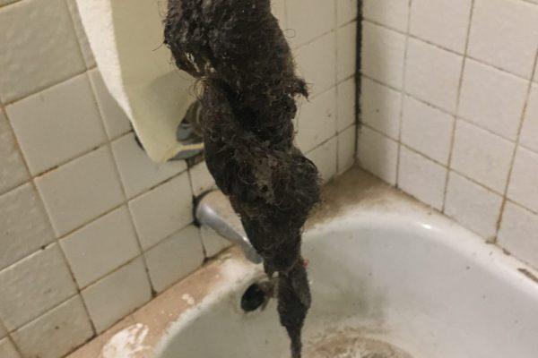 Repaired Clogged Bathtub in San Diego, CA