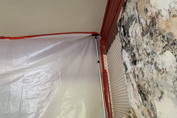 Mold Removal in Riverside, California