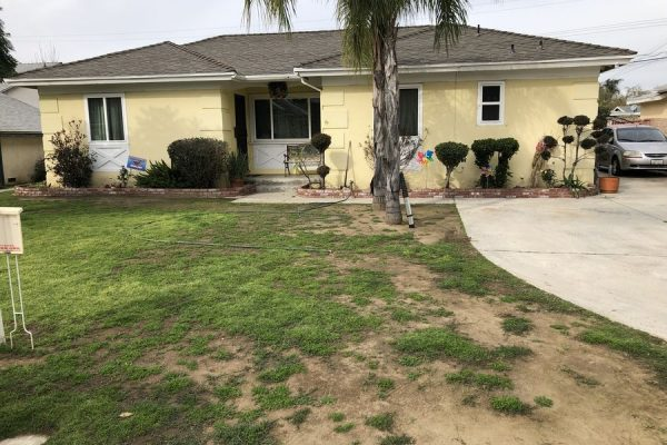 Mold Damage Remediation West Covina CA