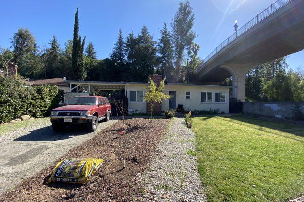 Pasadena Mold Damage Removal